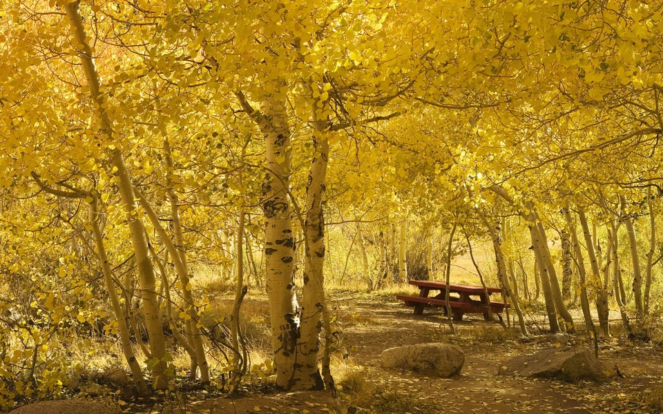笔记本壁纸 自然风景壁纸 大自然的色彩桌面壁纸下载   (13/13) 小