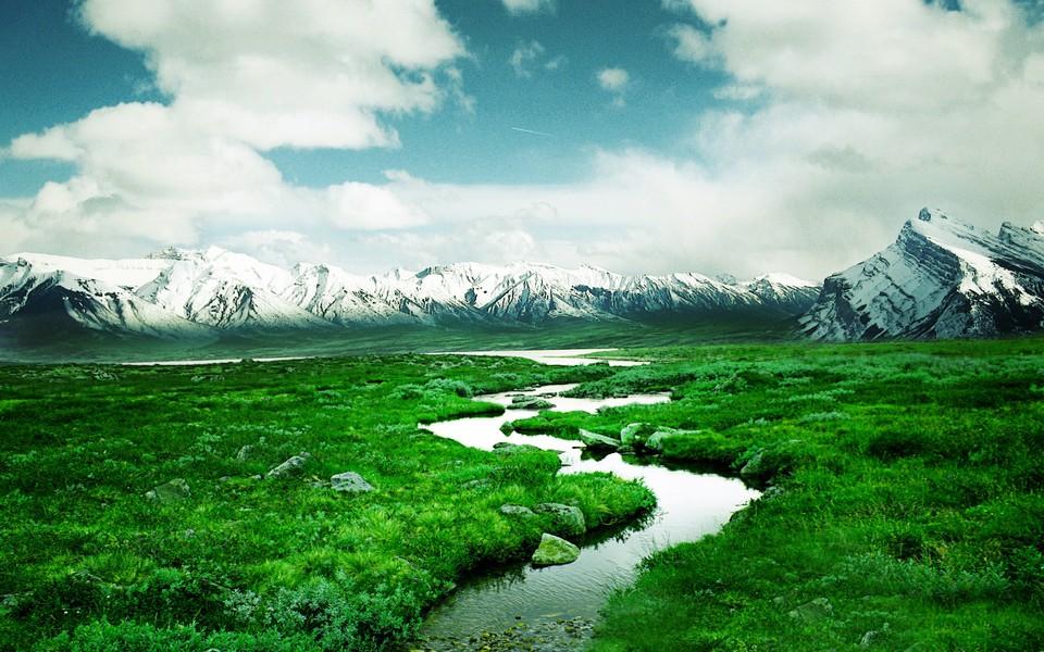绿色的自然美景电脑壁纸图集