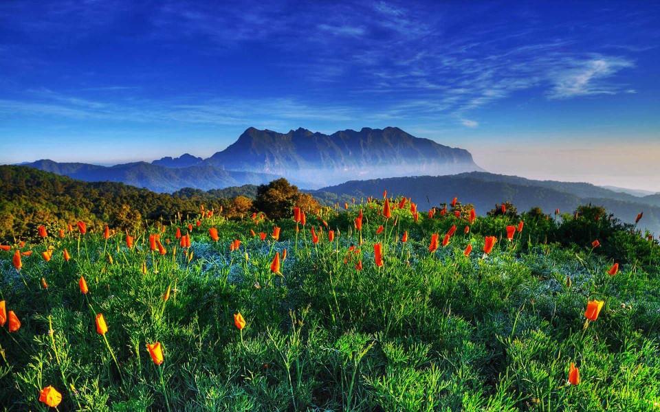 高清风景美景护眼壁纸