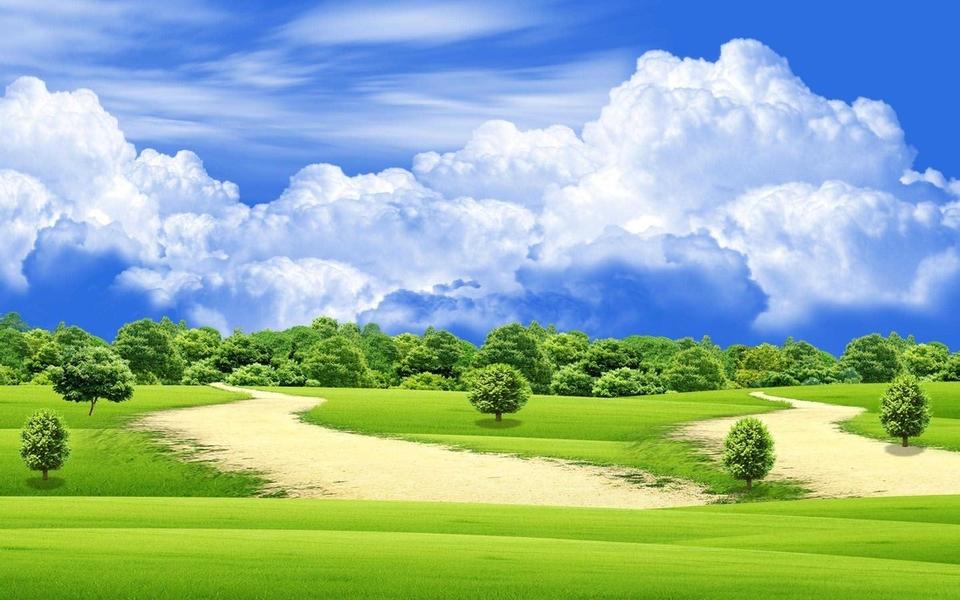 绿色自然唯美壁纸桌面
