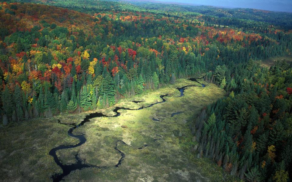 自然风景壁纸 自然风景高清图片下载   (6/11) 小箭头图标亲~快来扫我
