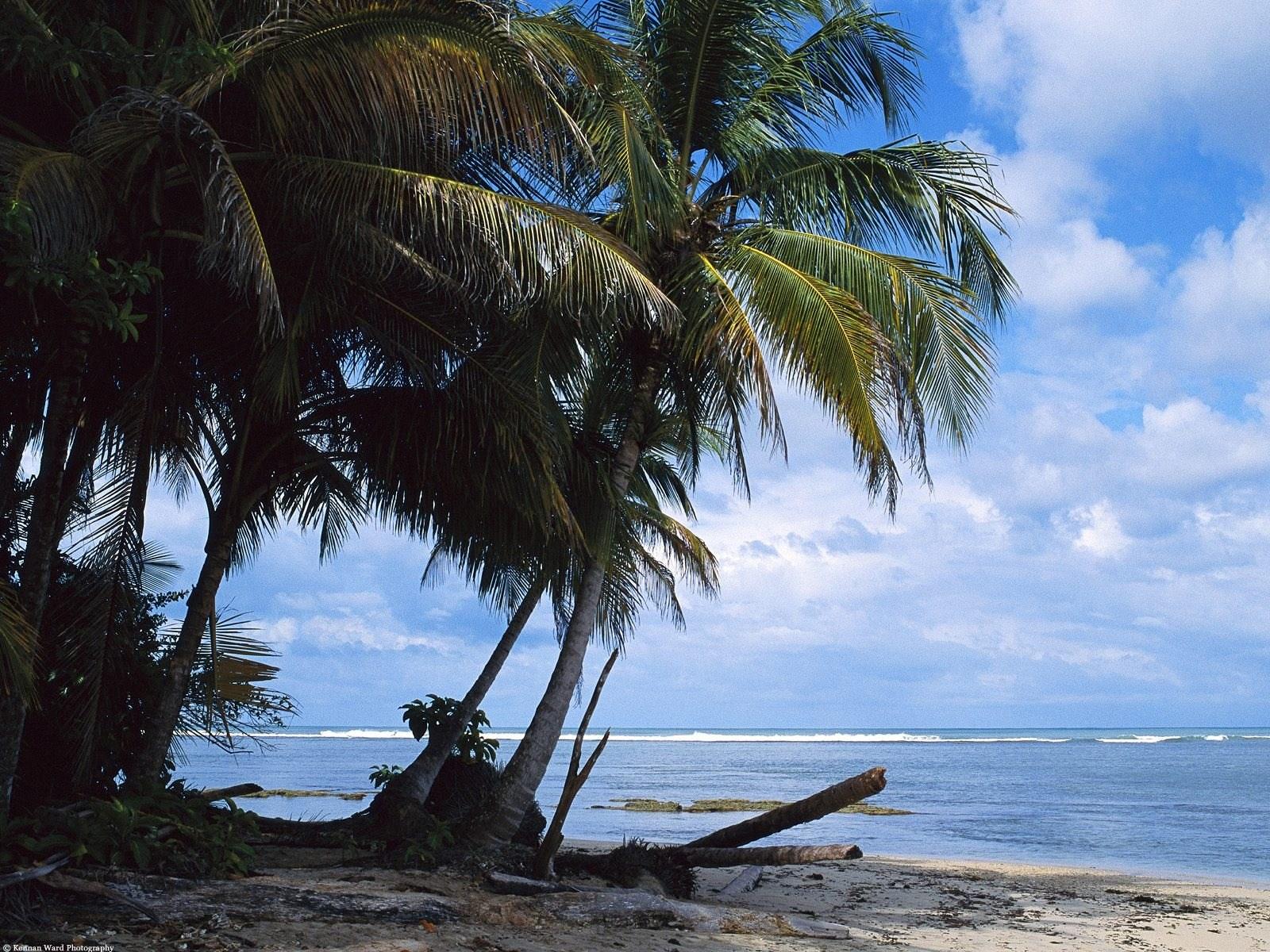 【高清图】海滨风光电脑桌面壁纸 第12页-zol图片频道