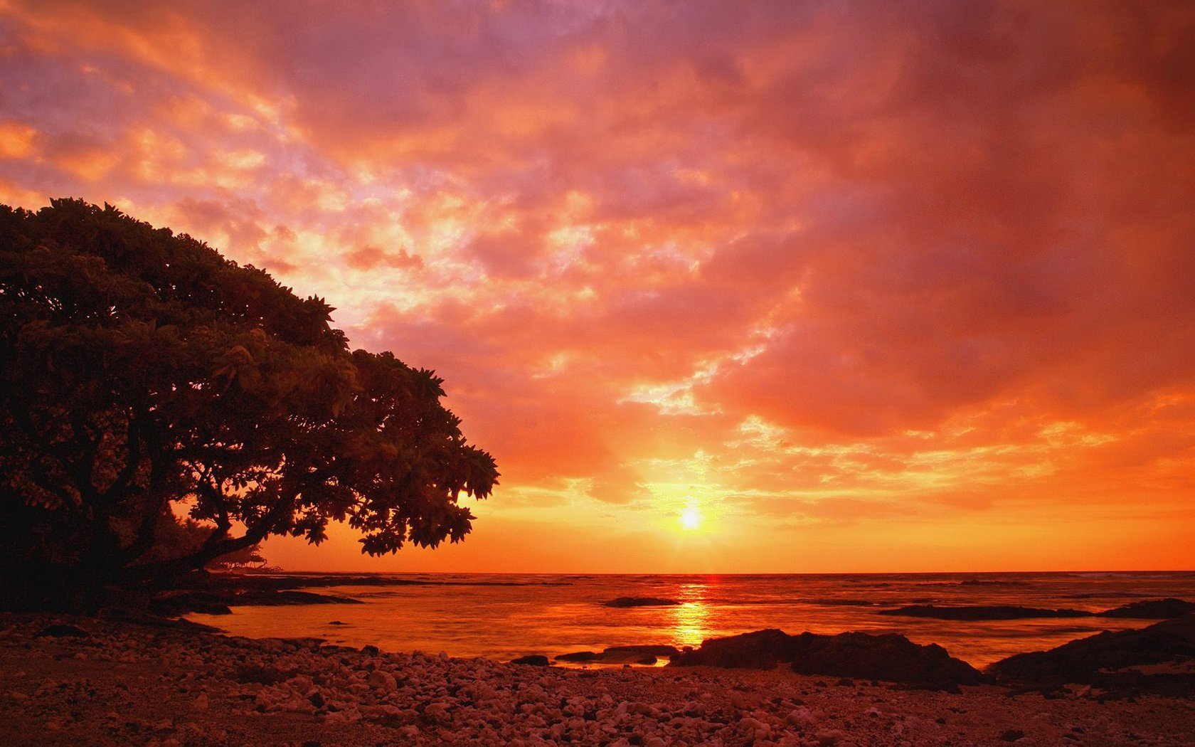 黄昏阳光美景电脑壁纸图片