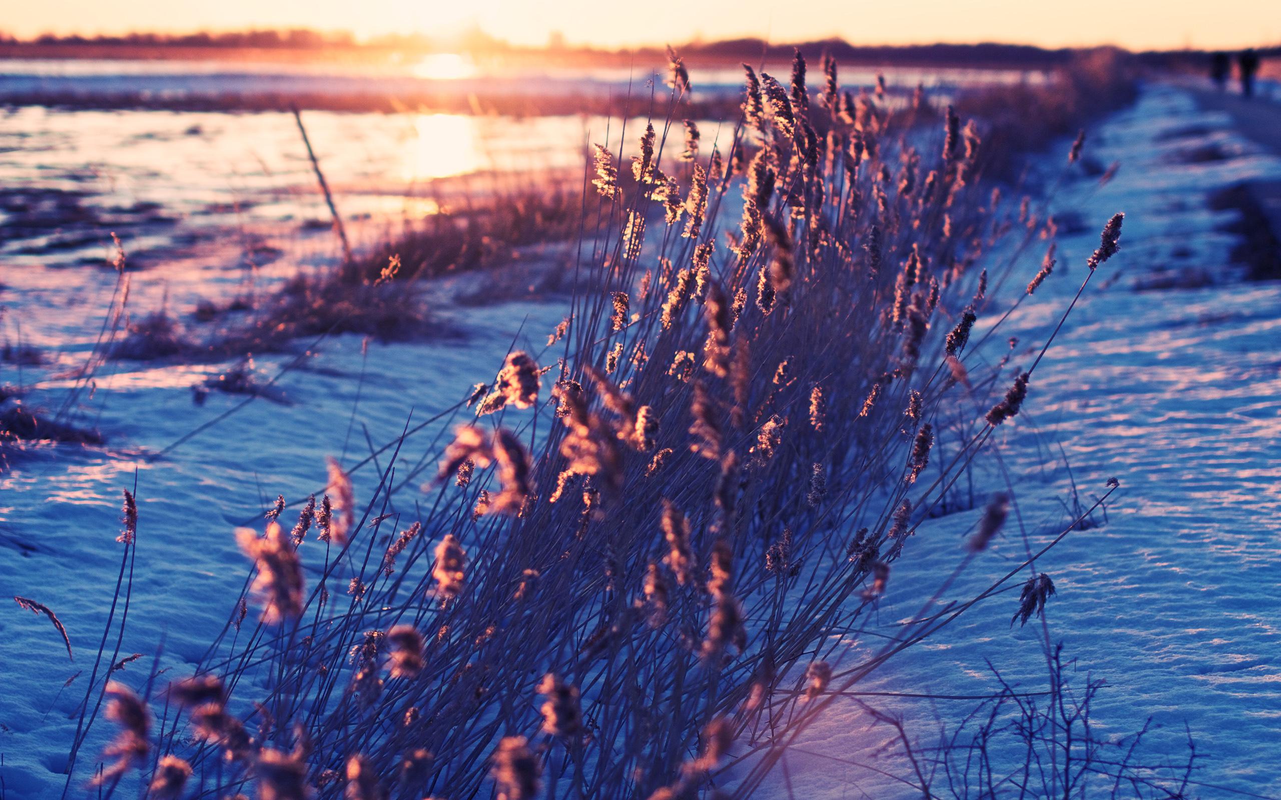 冰雪世界唯美壁纸图片-风景-壁纸-星观美图