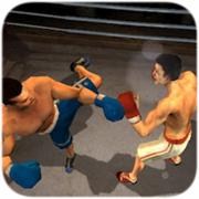 铁拳拳击 4.1.0
