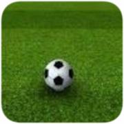 3D足球射门 2.0.4