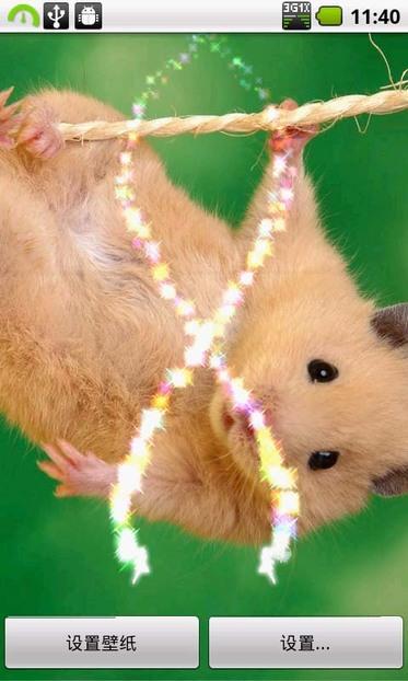 【图】ss可爱动物动态壁纸3