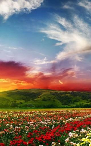 超美高清美丽风景壁纸