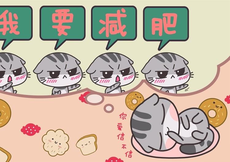 木木猫高清手机壁纸图片