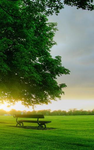 唯美大自然景物手机壁纸下载