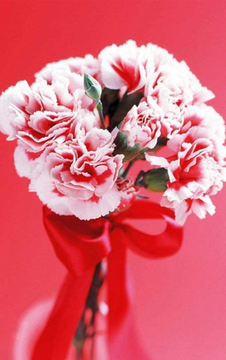 壁纸 花 花束 鲜花 桌面 320_510 竖版 竖屏 手机