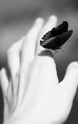 黑白色调美女壁纸图片 第3页-zol手机壁纸