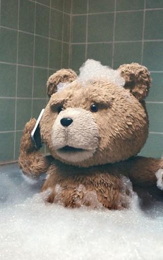 可爱泰迪熊手机壁纸-zol手机壁纸