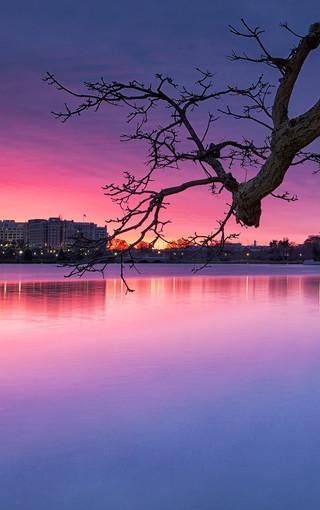 最美自然景观桌面壁纸-zol桌面壁纸_自然风景手机桌面壁纸