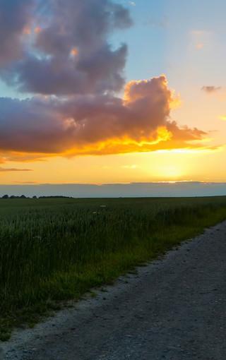 风景壁纸 自然风景壁纸 夕阳余晖手机壁纸   zol手机壁纸有部分资源来