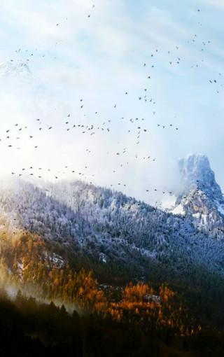 风景壁纸 高清风景壁纸 自然景观魅族手机壁纸