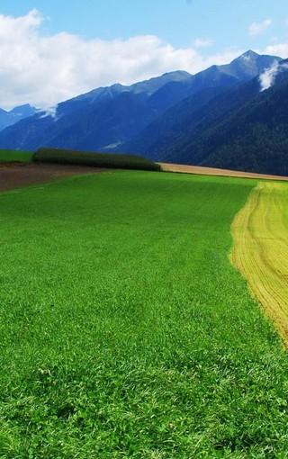 风景壁纸 自然风景壁纸 清新护眼手机高清壁纸