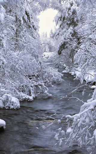 欧洲的冬季唯美冰雪手机壁纸