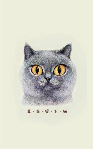 可爱猫咪手绘手机壁纸