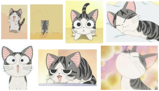 起司猫qq表情包图片
