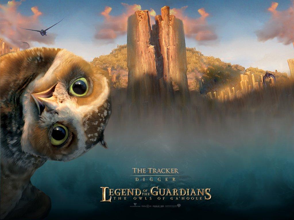 猫头鹰王国之守卫者传奇电影壁纸2010卍电影图片