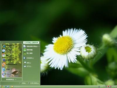 生机盎然的绿色春天主题软件简介