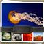 迷你图片批量处理工具(MiniPhoto)2.1