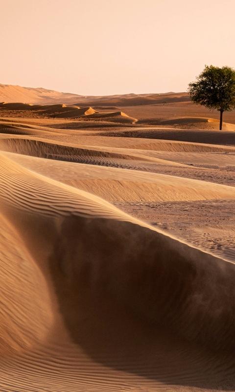 一望无际的沙漠图片高清壁纸2