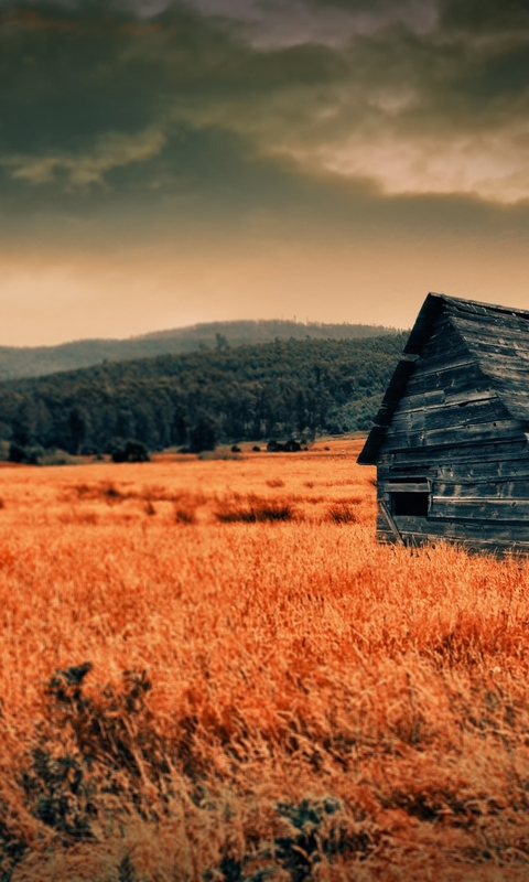 在山中的房子高清风景图片壁纸