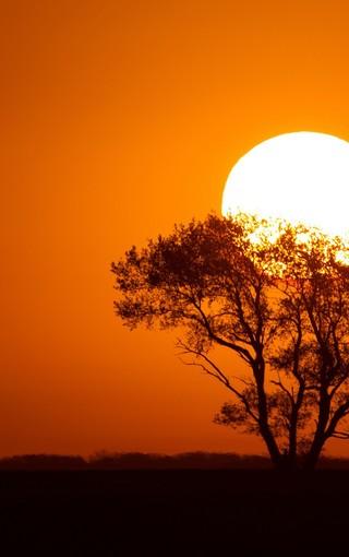 夕陽無限唯美手機壁紙