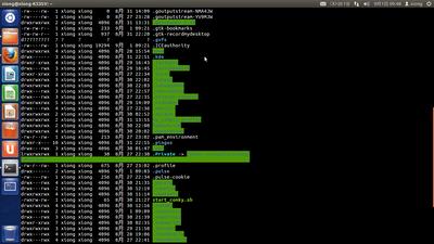 Ubuntu系统 19.04