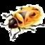 FireBug2.0.19