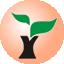 雨林木风u盘启动盘制作工具10.0