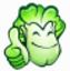 大白菜一鍵重裝系統7.0.10